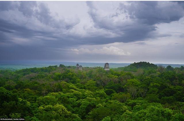 Vườn quốc gia Tikal, Guatemala
