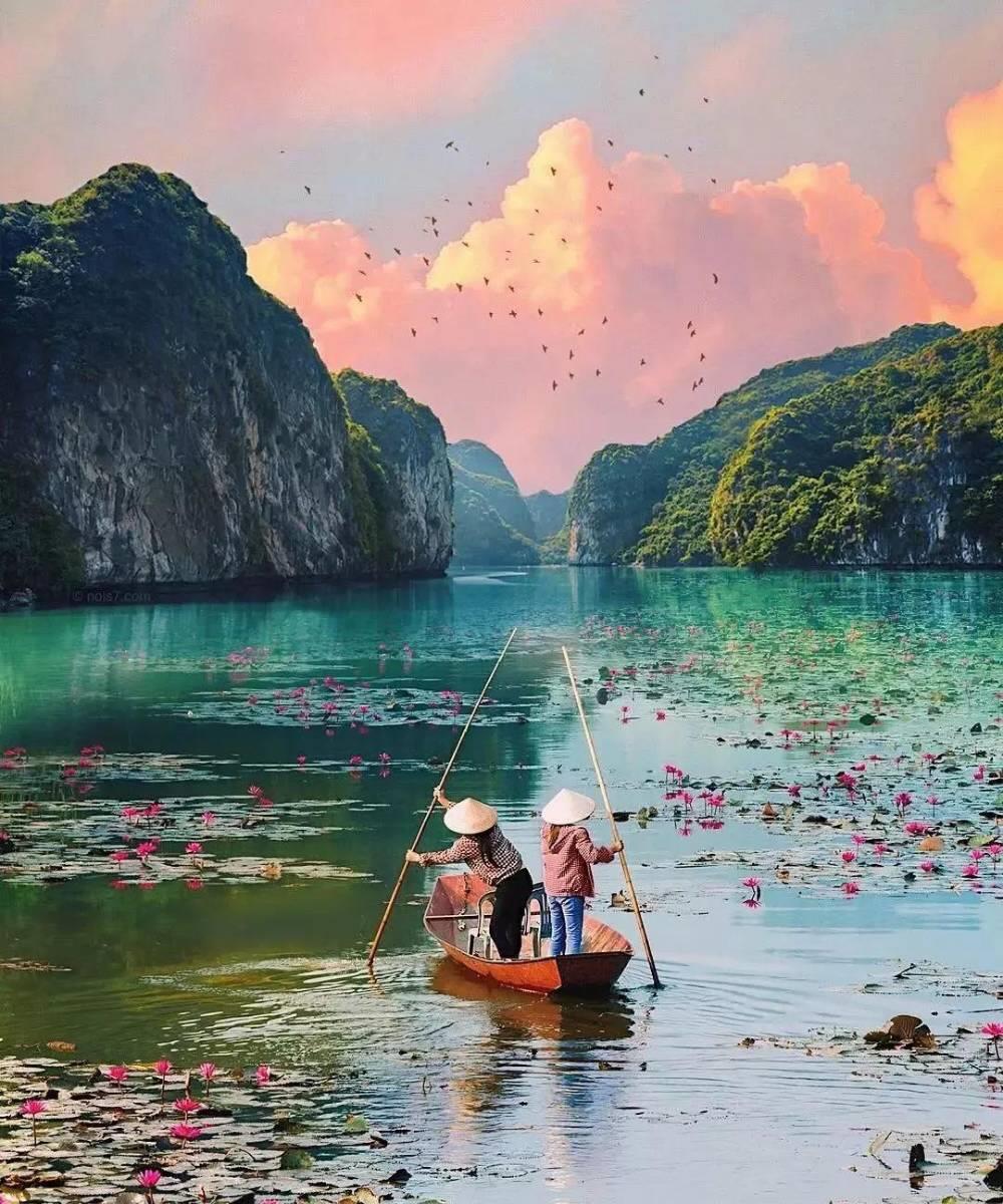 Hồ Quang Sơn mùa sen nở