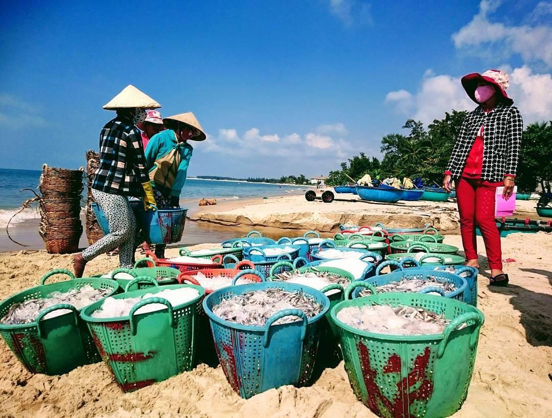 Thăm chợ hải sản ngày mới