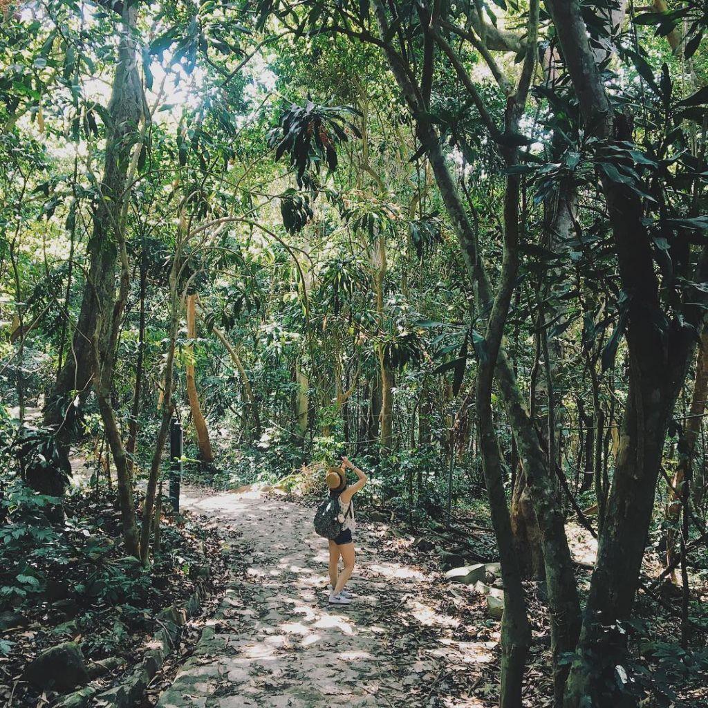 Đi bộ trong vườn quốc gia