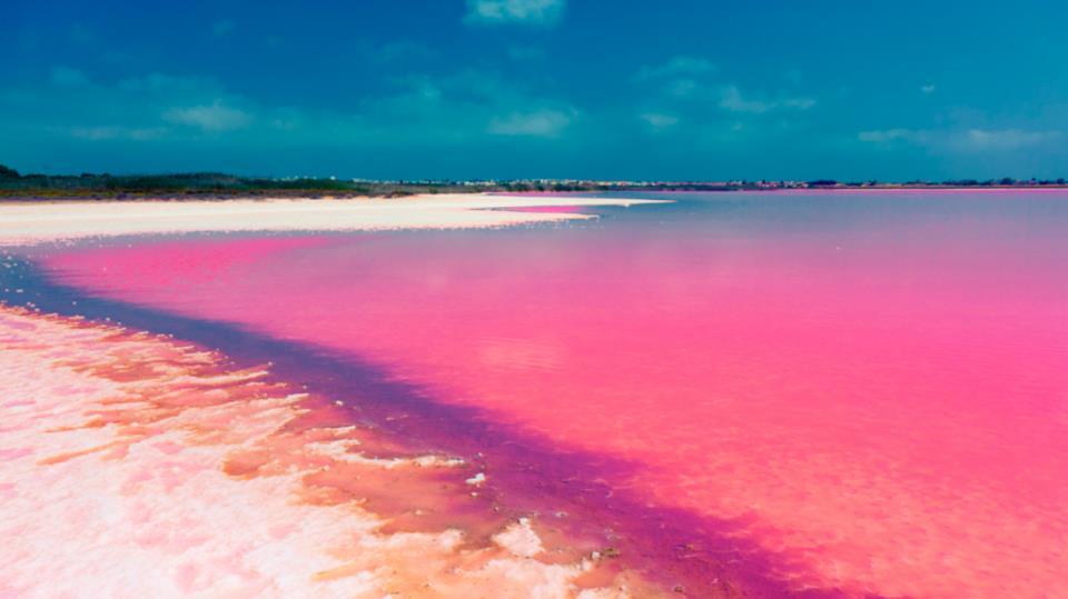Las Coloradas, hồ nước hồng đẹp mê hoặc ở Mexico