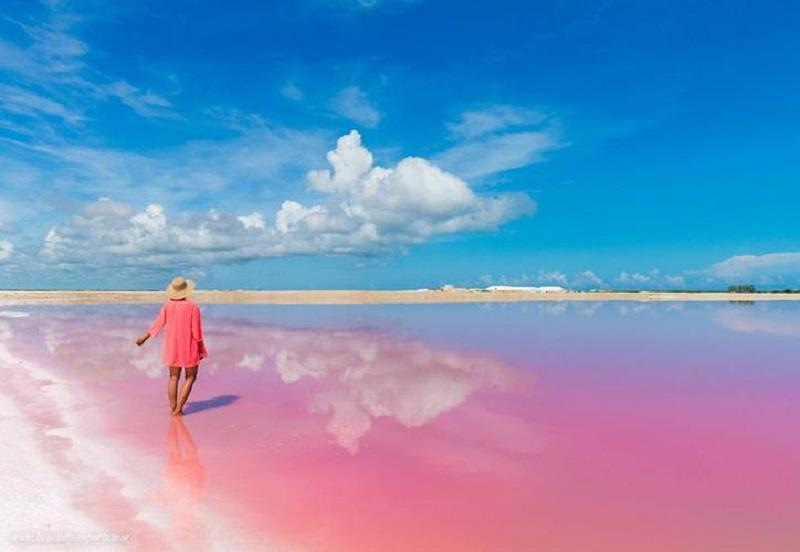 Vì sao hồ Las Coloradas có màu hồng đẹp mắt?