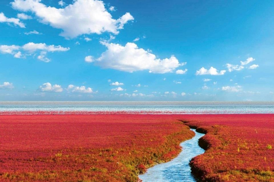 """5. """"Biển Đỏ"""" (Trung Quốc)"""