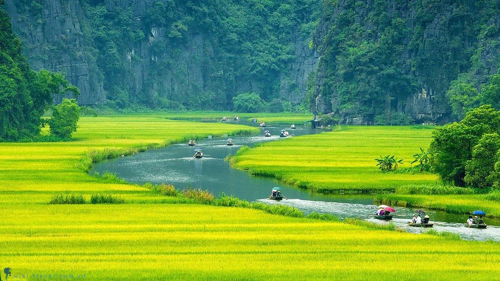 Du lịch sinh thái cùng những trải nghiệm tốt nhất Việt Nam