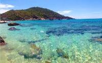 Về Nha Trang ra 'đảo Tôm Hùm' lặn biển ngắm san hô